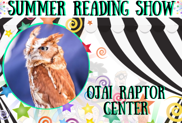 Black and white curtain with stars and swirlys overlaid, background is white with superheroes. Summer reading show and the performers name written in black lettering with an aqua shadow. Aqua colored circle frame with the performer in it.