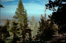 Looking north toward Antelope Valley